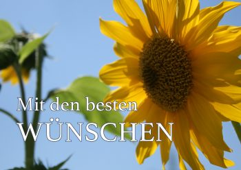 Glückwunschkarte Sonnenblume