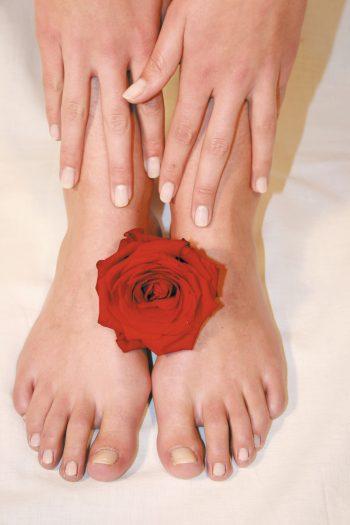 Füße rote Rose